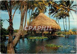 Moderne Karte Paysage Tahitien