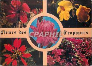 Moderne Karte Fleurs des Tropiques