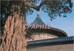 Moderne Karte China A Corner of Tiantan Park Temple of Heaven