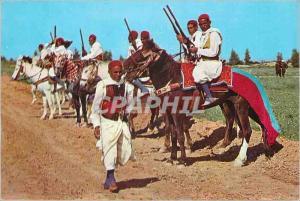 Moderne Karte Kairouan Cavaliers Zlass
