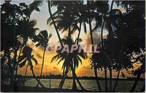 Moderne Karte Sunset in Tropical Florida