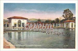 Moderne Karte The Wild Ducks at The Embarcadero Oakland California The Heart of the City Oakland California