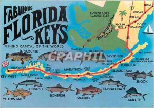 Moderne Karte Fabilous Florida Keys Crocodile Poissons