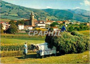 Moderne Karte Le Pays Basque Ainhoa (Pyrenees Atlantiques) Village type du Pays Basque Attelage B�ufs