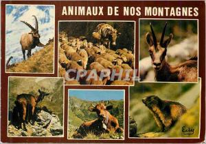 Moderne Karte Animaux de nos Montagnes Le Bouquetin troupeau de moutons et son ane chamois chevre vachet et ma