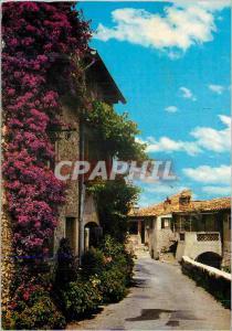 Moderne Karte Cote D'Azur Provence Une Vieille Rue Pittoresque et Fleurie
