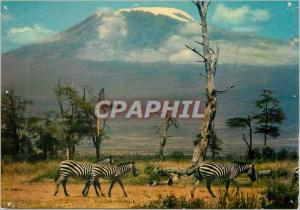 Moderne Karte Kenya Kilimanjaro