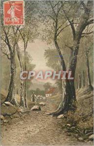 Ansichtskarte AK Fantaisie Moutons