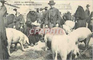 REPRO Nannilon Toute la Bretagne Le Marche aux Princes Porc Cochon