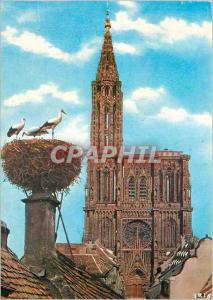 Moderne Karte Souvenir de Strasbourg L'Alsace Pittoresque Cigogne