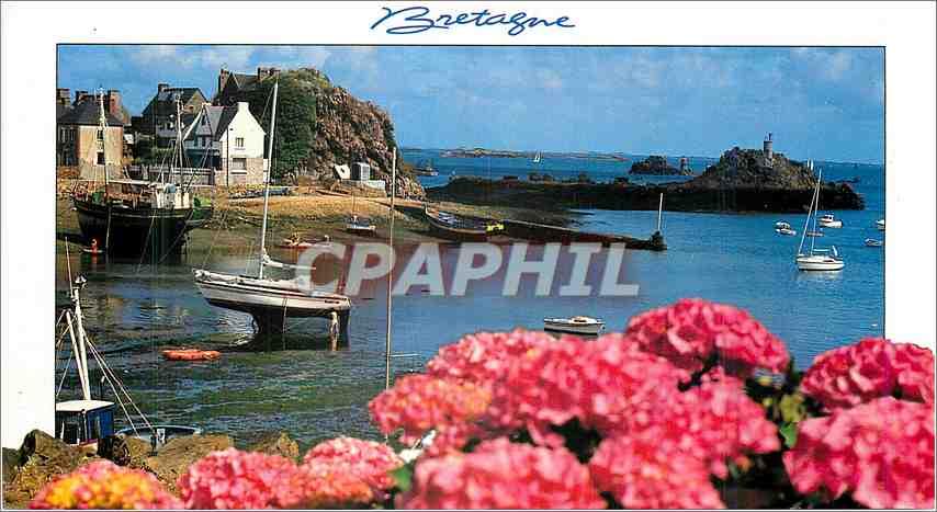 Moderne Karte Horizon de Bretagne Maree basse 0