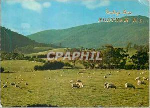 Moderne Karte Australia Norham W A