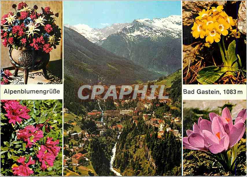 Moderne Karte Bad Gastein Alpenblumengrube 0