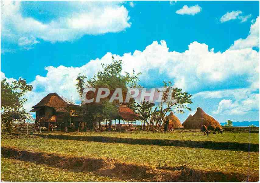Moderne Karte A Philippine Nipa Hut 0