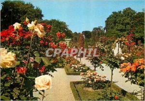 Moderne Karte Paris Bagatelle La Roseraie
