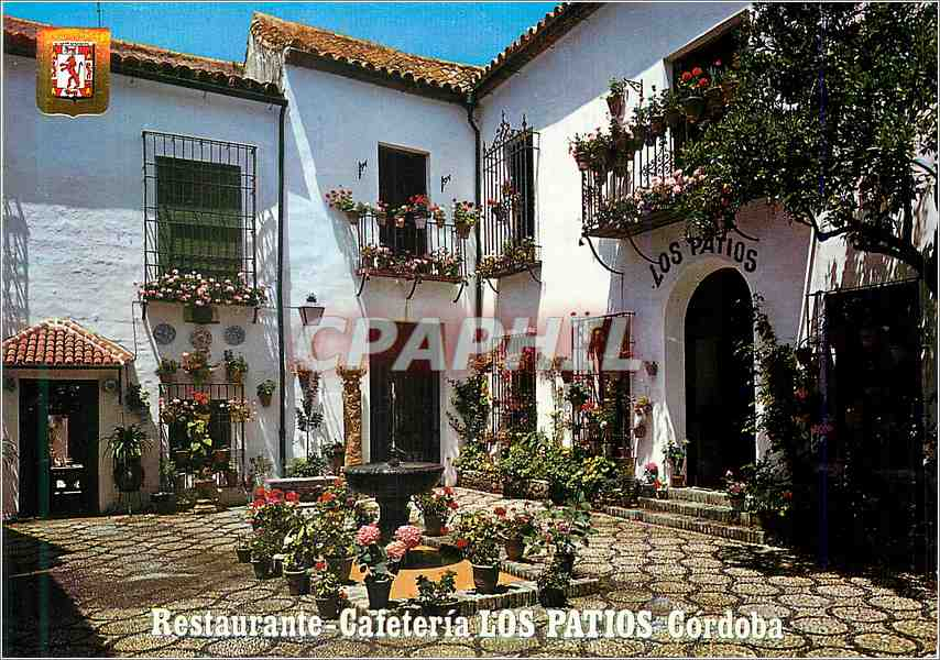 Moderne Karte Cafeteria Restaurant Los Patios Cardenal Herrero 0