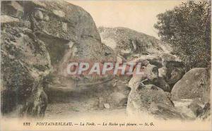 Ansichtskarte AK Fontainebleau La Foret La Roche que pleure