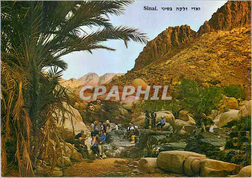 Moderne Karte Sinai An Arab name for a brook in the Sinai Mountains 0
