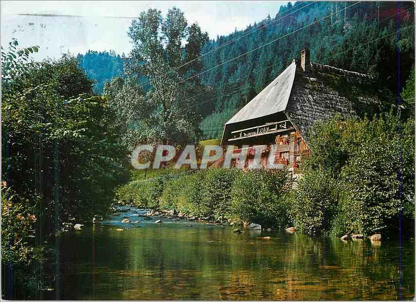 Ansichtskarte AK Schwarzwalder Bauernhaus 0