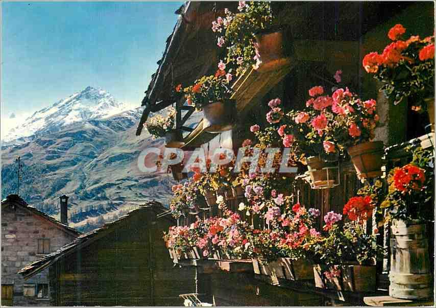 Moderne Karte Chalet fleuri du Val d Herens 0