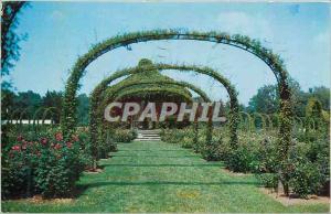 Moderne Karte Rose Gardens Elisabeth Park Hartford Conn During june and July