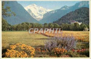 Moderne Karte Interlaken Jungfrau Berner Oberland