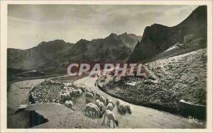 Moderne Karte Les Pyrenees Le Col du Tourmalet Descente sur Bagneres de Bigorre Moutons