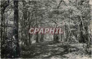 Moderne Karte Villeneuve sur Verberie Oise Sous bois en Foret d Halatte