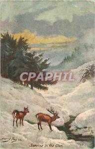 Ansichtskarte AK Sunrise in the Glen