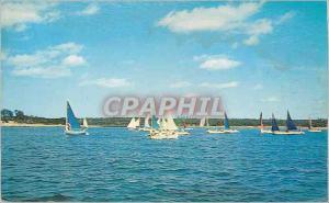 Moderne Karte Sailing off Wings Neck Pocasset Mass