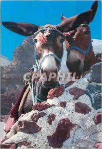 Moderne Karte Greece Ane Donkey