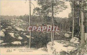 Ansichtskarte AK Foret de Fontainebleau Le Desert d'Apremont