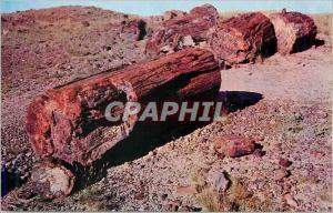 Moderne Karte Forest National Park Arizona Petriefied Log Sections