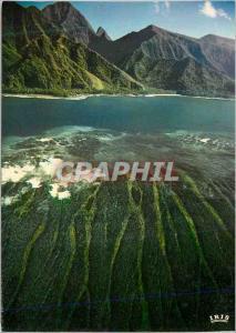 Moderne Karte Tahiti Couleurs du Recif