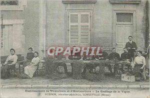REPRO Longeville (Meuse) Etablissement de Viticulture Le Greffage de la Vigne