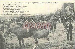 REPRO Champ de foire a Lessay (12 Septembre) Chevaux