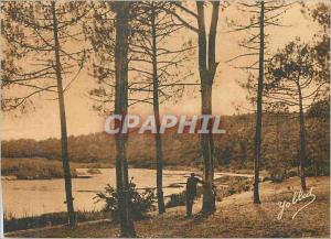 Ansichtskarte AK Dans Les Landes de Gascogne Paysage a Auretlhan