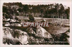 Moderne Karte Fontainebleau La Foret Vue sur le Desert d'Apremont