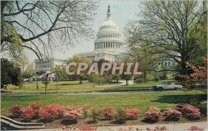 Moderne Karte Washington DC Capitol and Spring Blossams