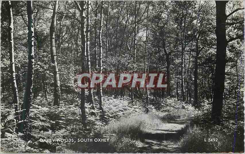Moderne Karte Oxhey Woods South Oxhey 0