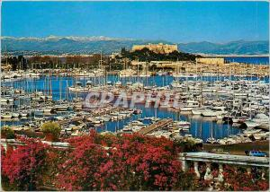 Moderne Karte Antibes (A M) Cote d'Azur Le Port de Plaisance au Fond le Fort Carree et les Alpes Neigeuses Bat