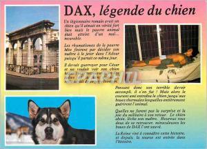 Moderne Karte Dax Legende du chien