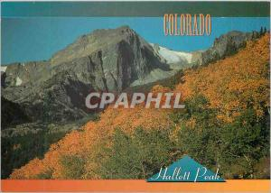 Moderne Karte Colorado Hallett Peak Fall Leaves Cover Tree Tops as Pines in the Distance Stand Tall and Green