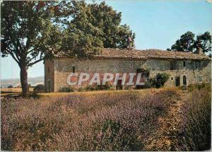 Moderne Karte Les Belles Images de Provence Vieille Chapelle et son champ de Lavande