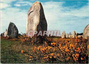 Moderne Karte Menhirs dans la lande fleurie Couleurs de Bretagne