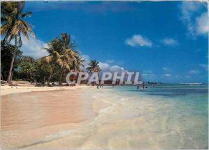 Moderne Karte Guadeloupe Saint Francois La Plage des Raisins Clairs