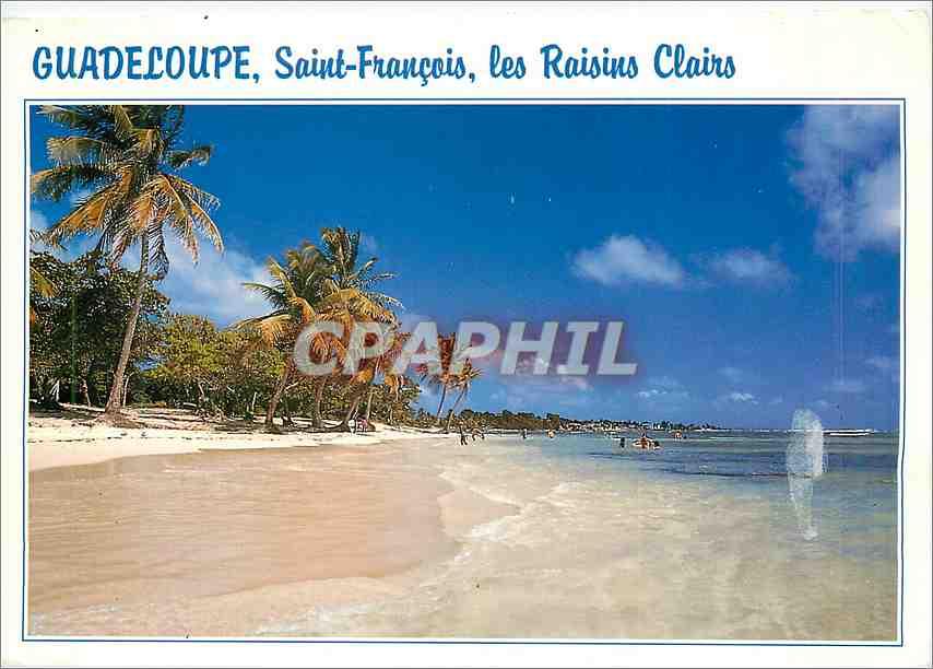 Moderne Karte Guadeloupe Saint Francois Les Raisins Clairs 0