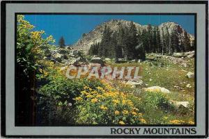 Moderne Karte Rocky Mountains Wildflowers in the Beautiful Rocky Mountains