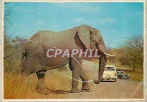 Moderne Karte South Africa Where Mass meets Motor Elephant