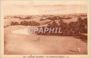 Ansichtskarte AK Paysage Saharien Les Jardins du Desert